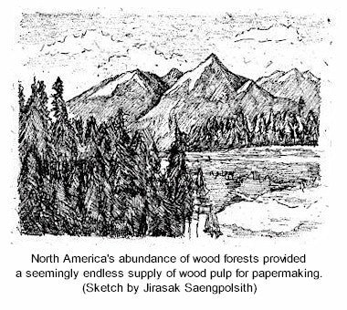 North American trees - a seemingly endless supply