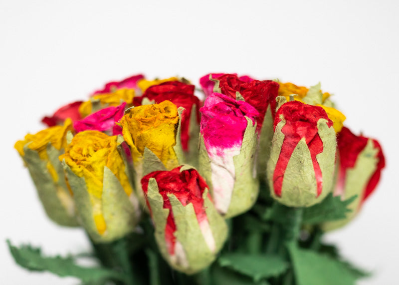 Eco-Friendly, Tree-free, Chemical free, sustainable Elephant POOPOOPAPER Roses