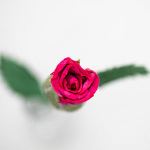 Load image into Gallery viewer, Single Pink Eco-Friendly, Sustainable, POOPOOPAPER Rose - Top View Close Up