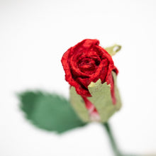 Load image into Gallery viewer, Single Red POOPOOPAPER Rose -Single Rose - Top View