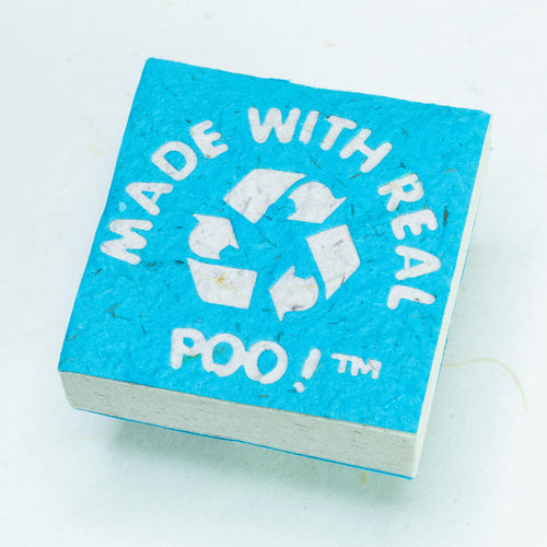 Made With Real Poo! - Elephant - POOPOOPAPER - Blue - Scratch Pad (Set of 3) - Front