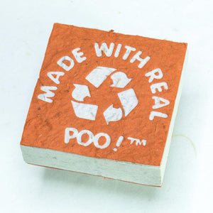 Made With Real Poo! Scratch Pad set - Organic, Tree-Free Cow Paper - Orange - Front