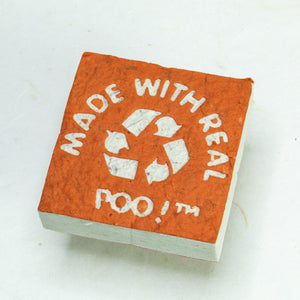 Made With Real Poo! - Horse POOPOOPAPER - Orange - Scratch Pad (Set of 3)