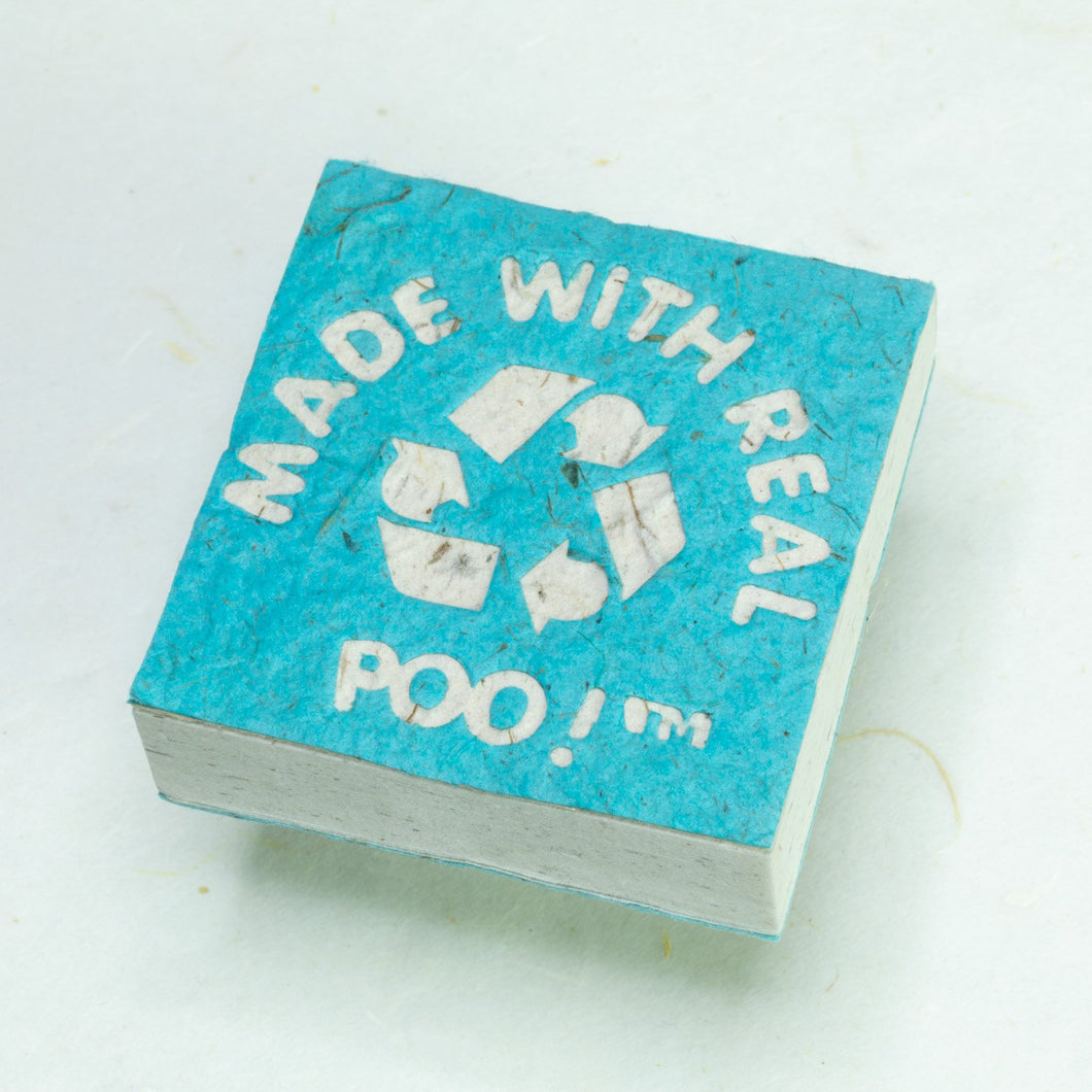 Made With Real Poo! - Horse POOPOOPAPER - Turquoise - Scratch Pad (Set of 3) - Front