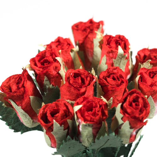 Bouquet of Twelve - Red, Eco-Friendly, Sustainable, Roses and Card made from Elephant, Cow or Horse POOPOOPAPER.