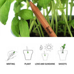 Load image into Gallery viewer, Sprout plantable graphite pencils - 8 Pcs