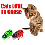Load image into Gallery viewer, Super Robot Bug Toy for Cats - 2 Pcs