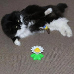 Load image into Gallery viewer, Interactive Bird Toy For Cats