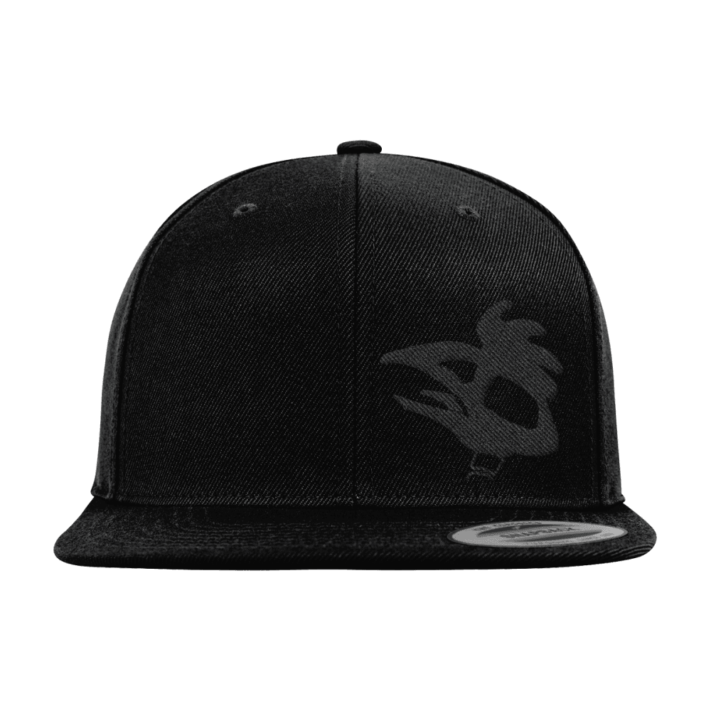 Día de Muertos Snapback Cap | Audio Architect Apparel