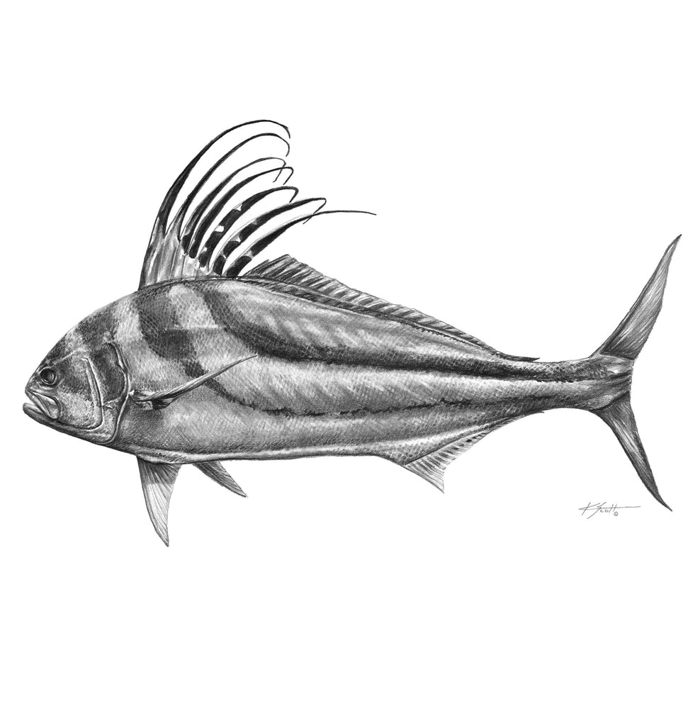 Rooster Fish Pencil