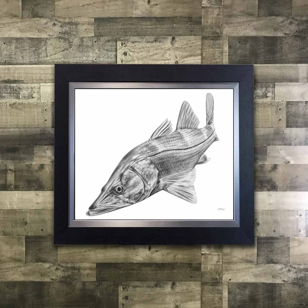 Snook Framed Pencil Art