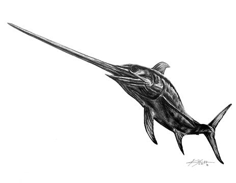 Swordfish Pencil