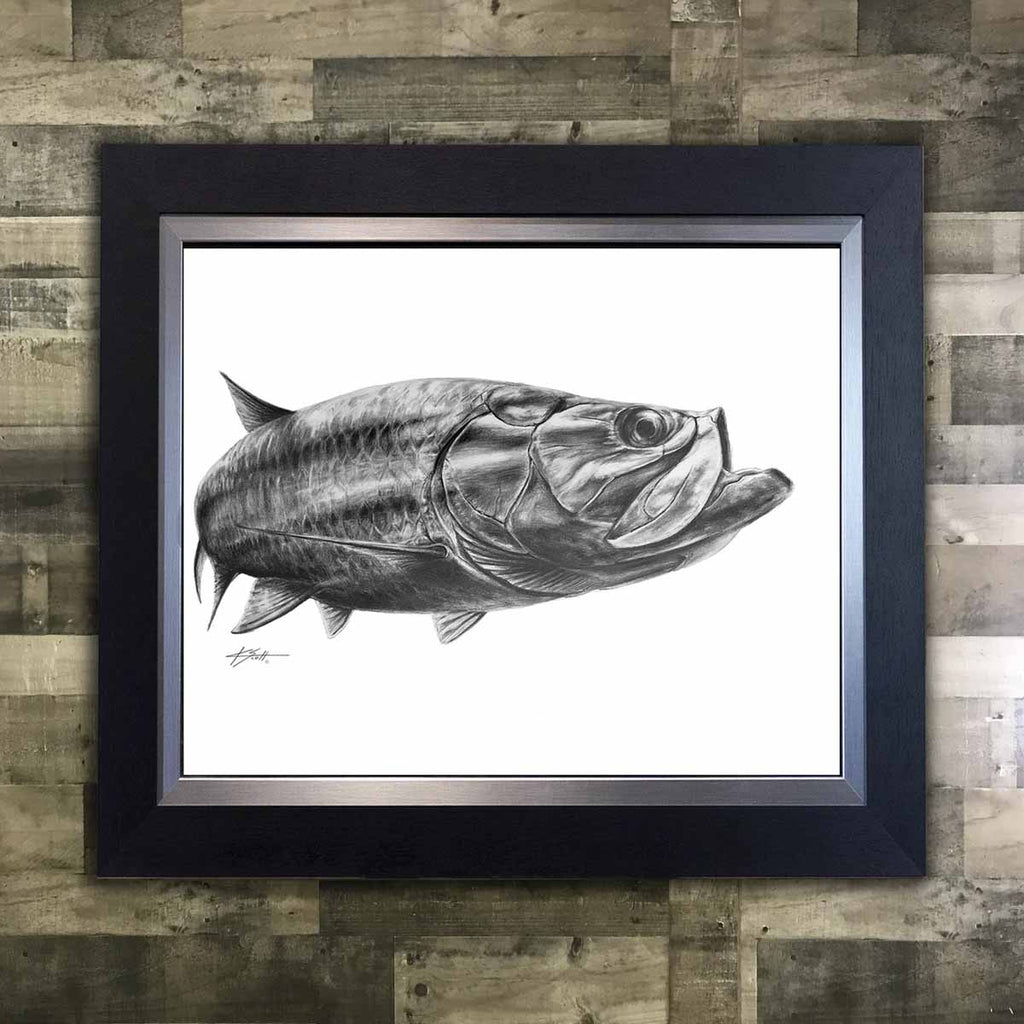 Tarpon Pencil Art