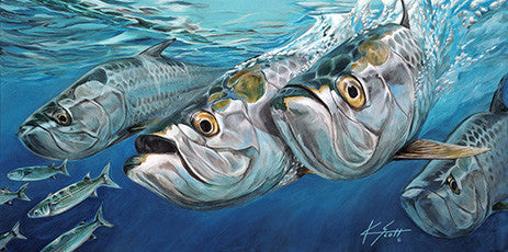 Tarpon & Mullet March
