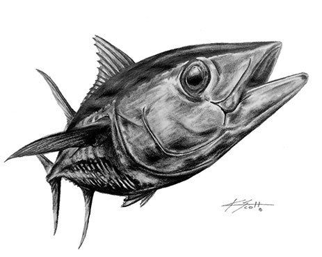 Yellowfin Pencil