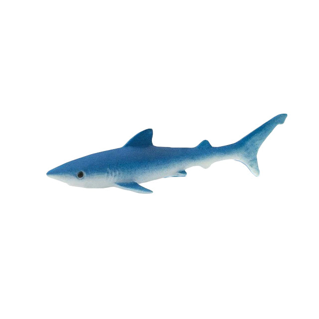 Good Luck Mini | Blue Shark
