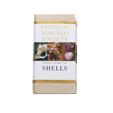 National Audubon Society Field Guide to Shells
