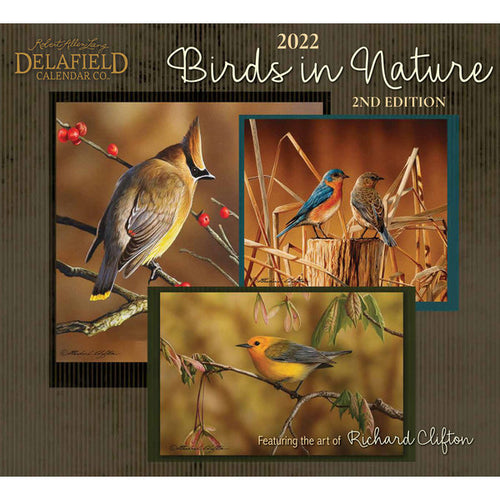 Delafield Calendar Birds in Nature