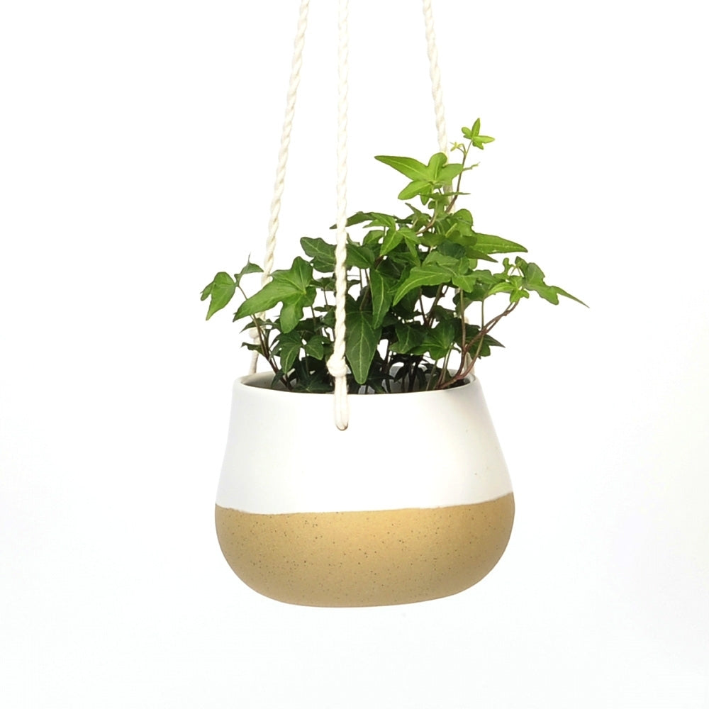 Hanging Planter White with Speckles
