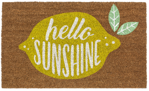 Door Mat Hello Sunshine