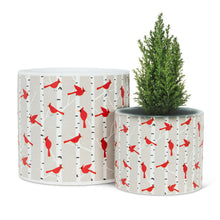 Load image into Gallery viewer, Cardinals & Birch Planter