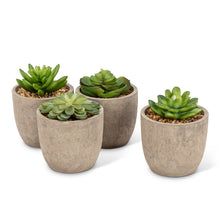 Load image into Gallery viewer, Faux Succulents