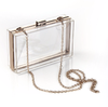 Transparent Box Clutch