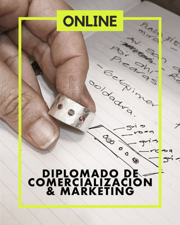 Diplomado de Comercialización & Marketing