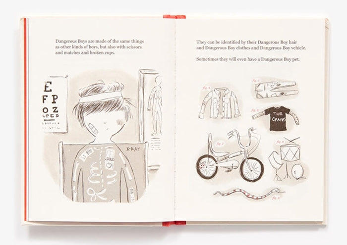 Boys: An Illustrated Field Guide — By Heather Ross
