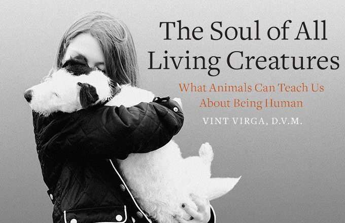 The Soul of All Living Creatures: What Animals Can Teach Us About Being Human — Vint Verga, DVM