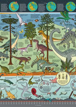 The What on Earth? Wallbook of Natural History