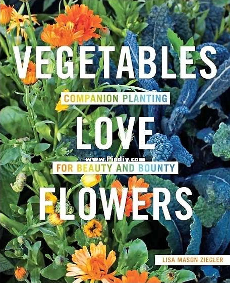 Vegetables Love Flowers: Companion Planting For Beauty and Bounty — Lisa Mason Ziegler