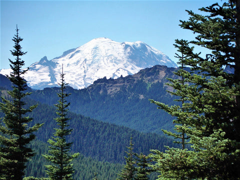 Mt. Rainier, Pacific Crest Trail, Washington