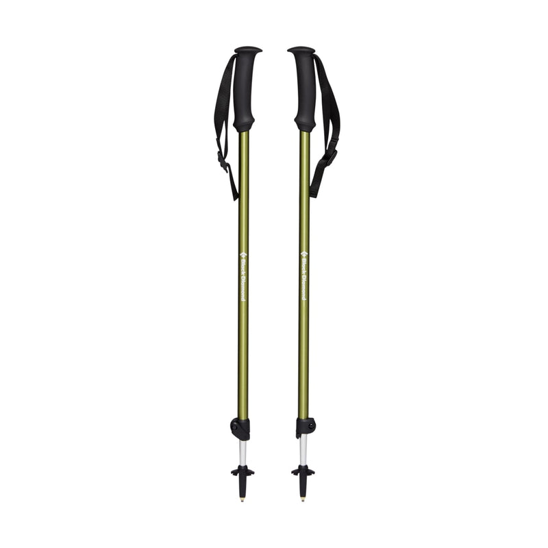 TRAIL EXPLORER 2 TREK POLES