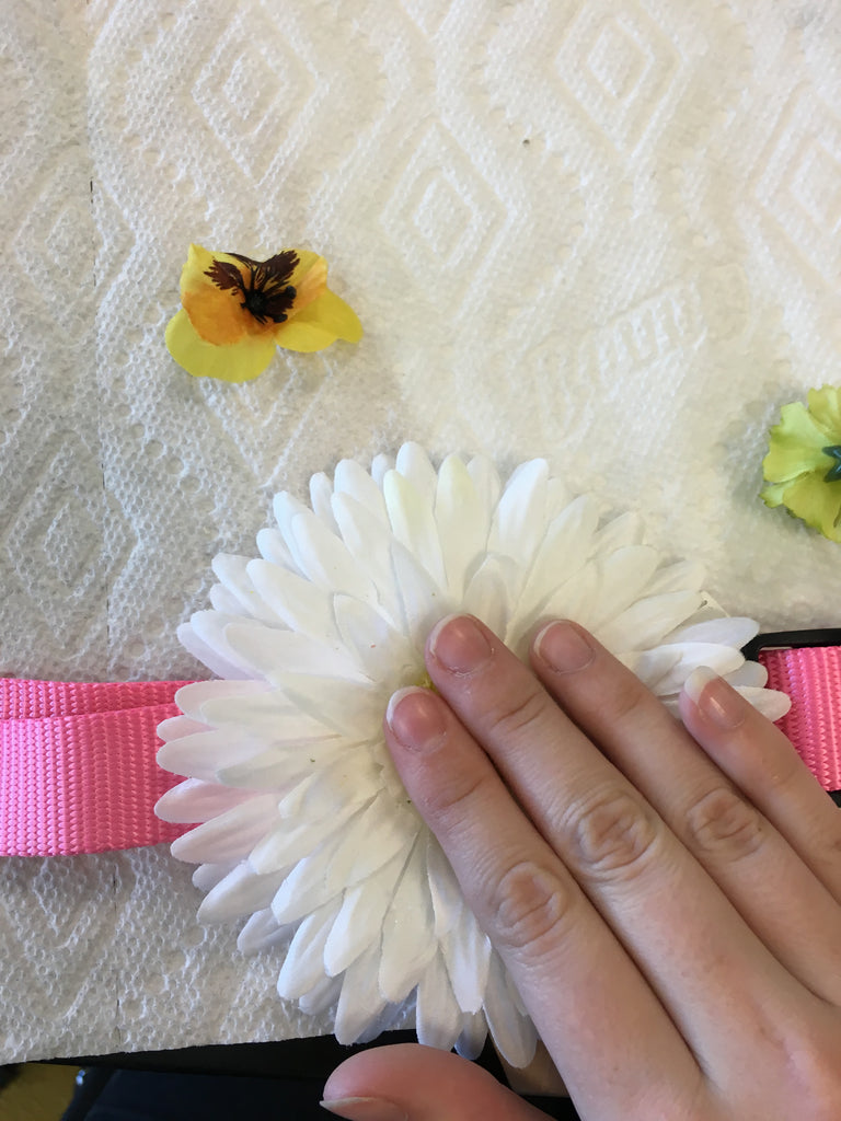 dog collar diy wedding project