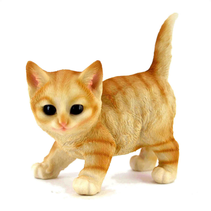 Beautiful and Realistic Look Orange Colour Active Kitten Animal idols - My Star Gardens