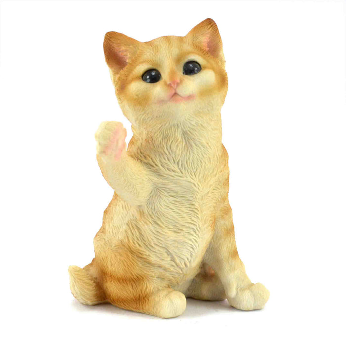 Cute and Beautiful Orange Colour Happy Kitten Gift Items - My Star Gardens
