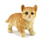 Cute and Lovely Orange Colour baby Cat Standing Design Animal Toys - My Star Gardens