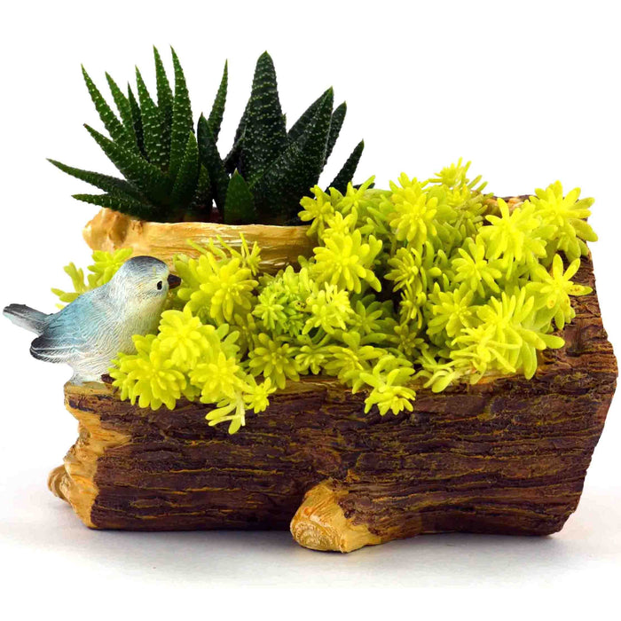 Cute Bird Sitting on Wood Bark Designed Resin Pots For Succulent Plants - My Star Gardens