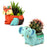 Home Decor Resin Pots Succulent plants ots small pots table top pots - My Star Gardens