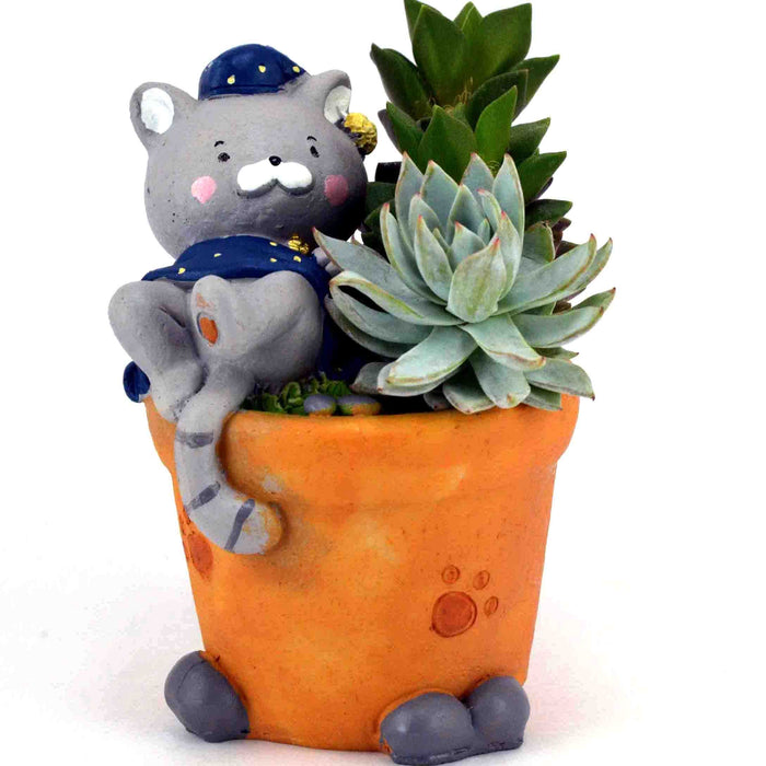Attractive Tom Sitting on the Pot Design Resin Pots For Succulent Plants - My Star Gardens