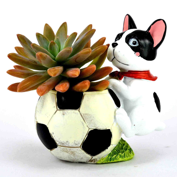 Cute Dog with Football Design For Succulent Plants - My Star Gardens