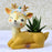 Cute and Happy Dreamy Deer with Butterfly Resin Pot For Succulent Plants