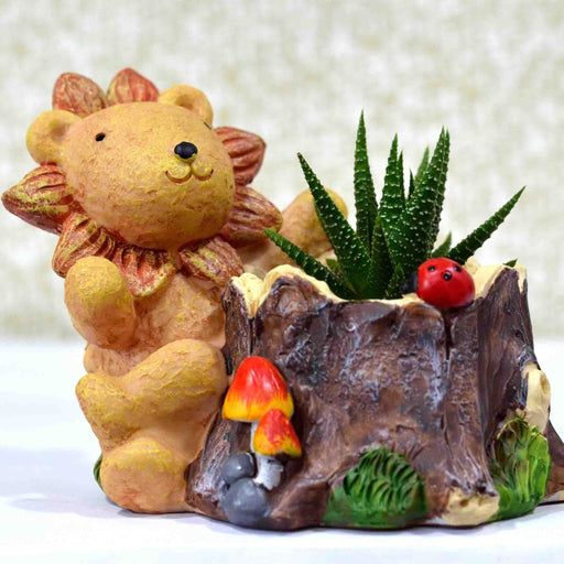 Cute Lion Cub Resin Pot For Air Plant - My Star Gardens