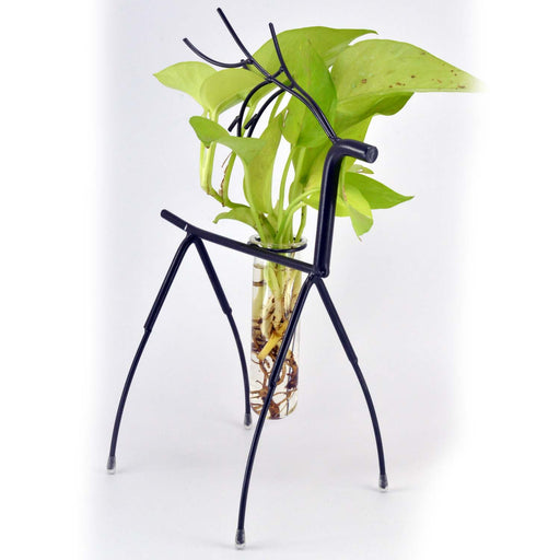 Deer Metal Stand With Glass Tube Terrariums Money Plant Planter - My Star Gardens