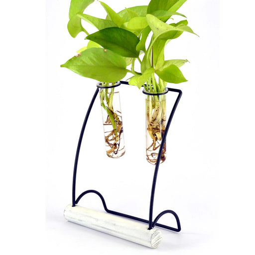 Hanger Metal Stand With Natural Wood base Glass Tube Terrariums - My Star Gardens