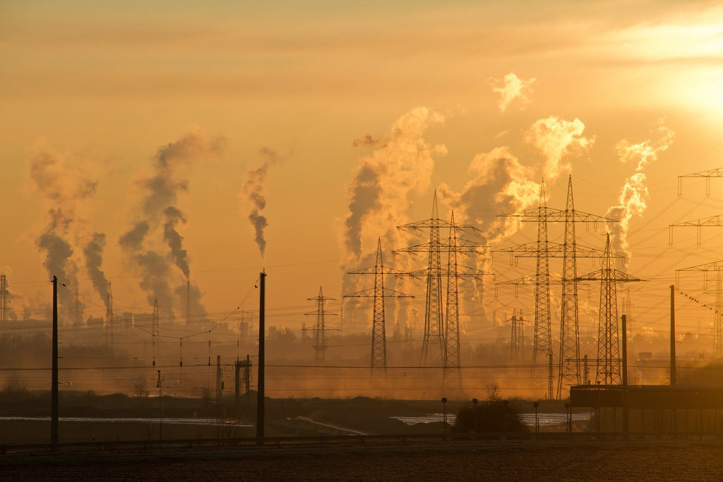 Air Pollution and Its Harmful Effects on Human Health