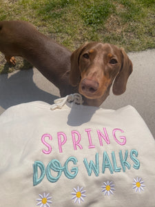 Embroidered Spring Dog Walks Hoodie
