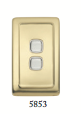 Tradco 'ROCKER DOUBLE SWITCH' Polished Brass 5853 72mm x 115mm