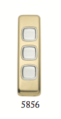 Tradco 'ROCKER TRIPLE SWITCH' Polished Brass 5856 30mm x 108mm